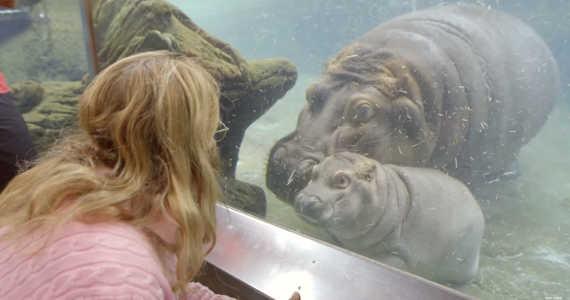 10 nejlepších zoologických zahrad na světě roku 2015